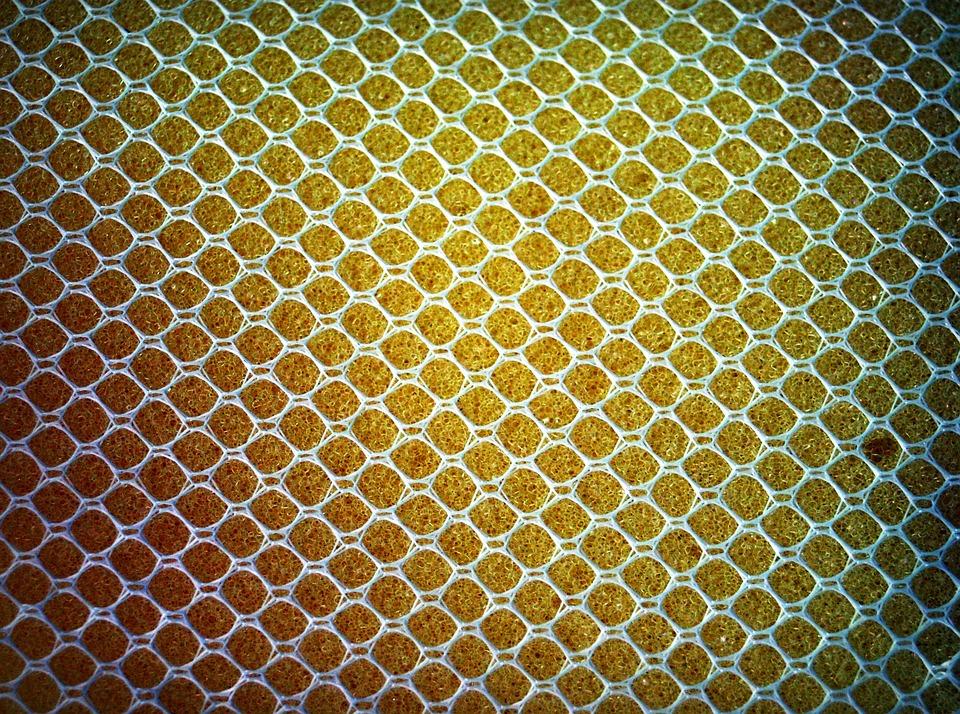 sponge-1551396_960_720