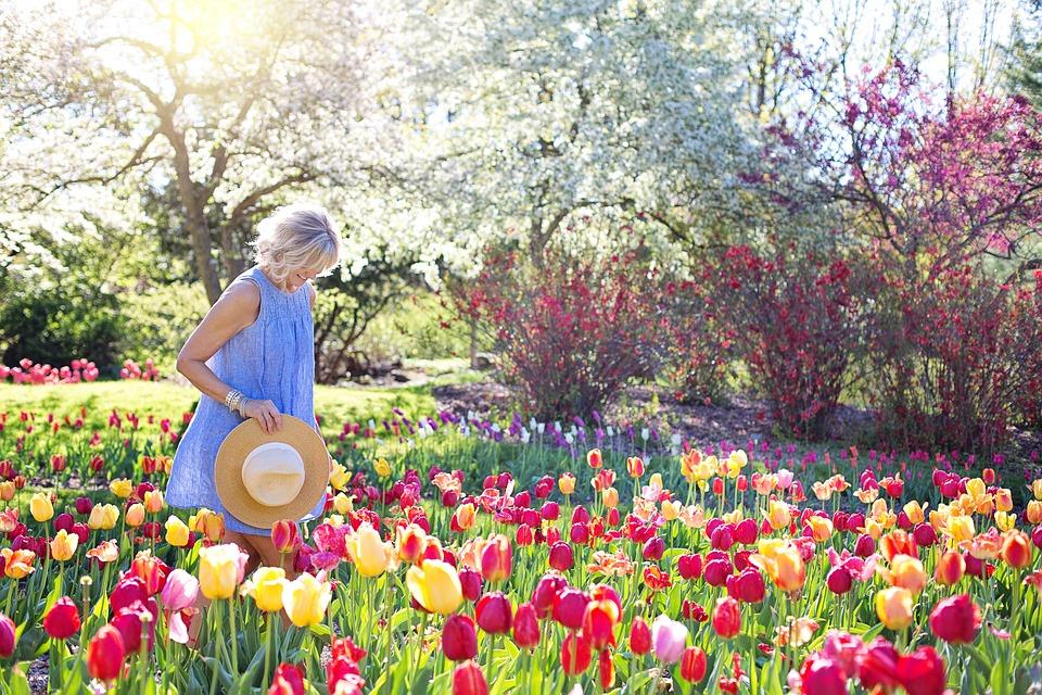 spring-2298280_960_720